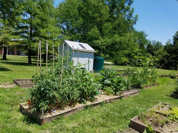 photo of D.H. Crum garden