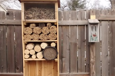 Kathy's insect hotel