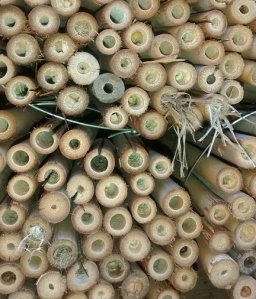 Picture of bamboo tubes with long pieces of grass sticking out the ends.