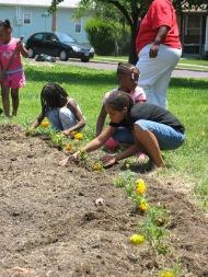 kids plant marigolds at Circus-Lyons garden