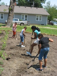 kids dig holes for tomato plants