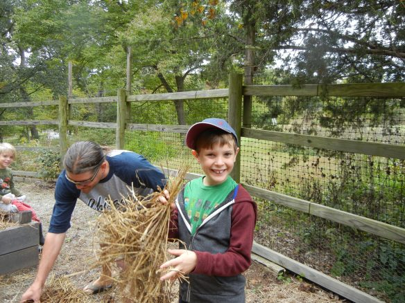 young boy holding straw to mulch raised bed