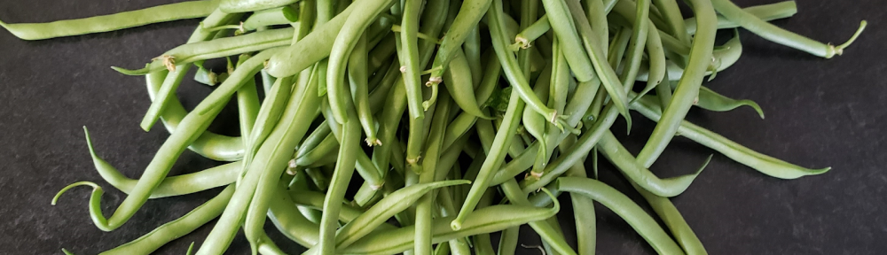 a pile of homegrown green beans