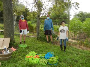 3 Interfaith gardeners standing at the garden with some of their harvest